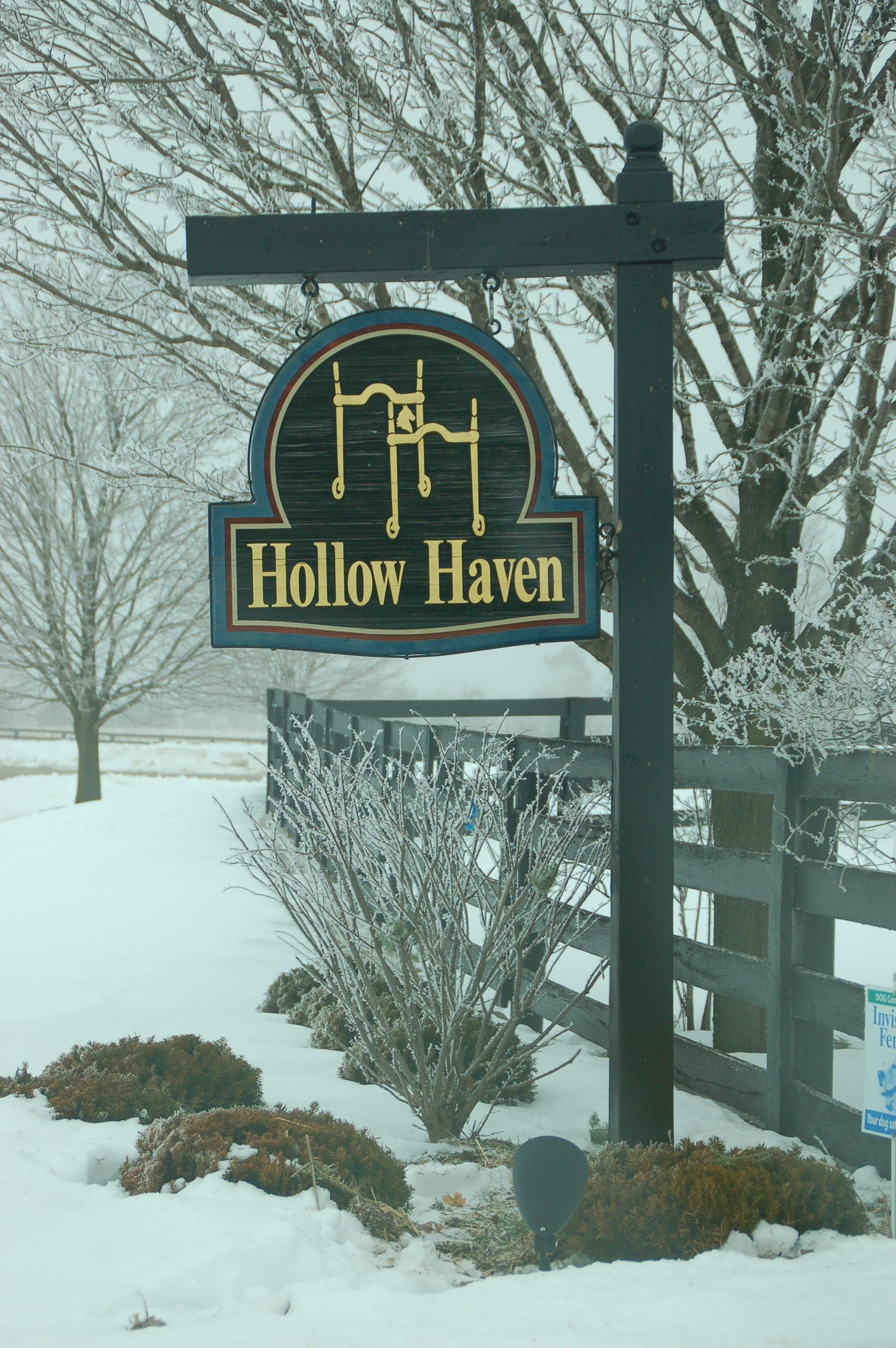 Hollow Haven Farm Photos